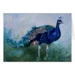 Tarjeta en blanco de Sr. Peacock