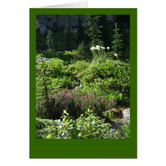 Tarjeta en blanco del Wildflower de la montaña