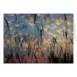 Tarjeta en blanco - puesta del sol de la isla de V