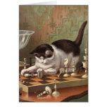 Tarjeta en blanco - serie traviesa del gato - gato