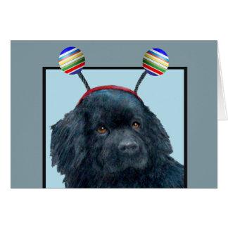 Tarjeta en blanco tonta del perro negro