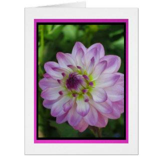 Tarjeta - Feliz Cumpleaños - La Dalia Rosa-Púrpura Card