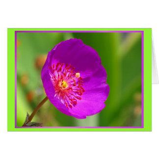 Tarjeta - Feliz Cumpleaños - La Flor Rosa