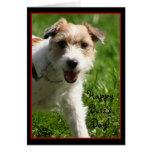 Tarjeta feliz de Jack Russell Terrier del día de B