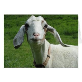 Tarjeta feliz de la cabra