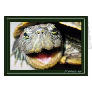 Tarjeta feliz de la tortuga