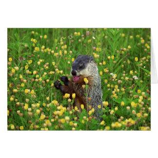 ¡Tarjeta feliz del día de la marmota! Tarjeta De Felicitación