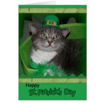 Tarjeta feliz del día de St Patrick con el gato
