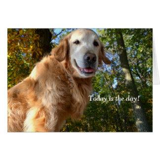 Tarjeta feliz del perro/de cumpleaños