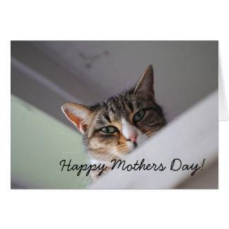 Tarjeta feliz dulce del día de madres del gato de