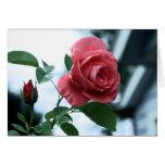 Tarjeta feliz rosada del día de madre subió florec