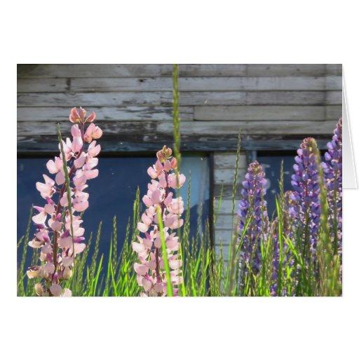 Tarjeta floral de la foto