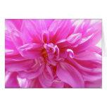 Tarjeta floral del espacio en blanco rosado de la