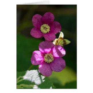 tarjeta floral del Wildflower de la frambuesa