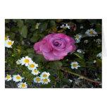 Tarjeta floral en blanco: Color de rosa rosado ent