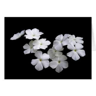 Tarjeta flotante del flor de la armonía de la paz