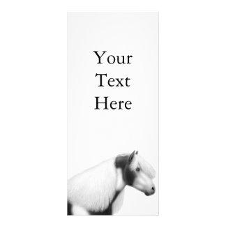 Tarjeta gitana del estante del caballo de la pintu tarjeta publicitaria a todo color