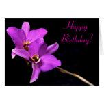 Tarjeta hermosa del feliz cumpleaños de la orquíde