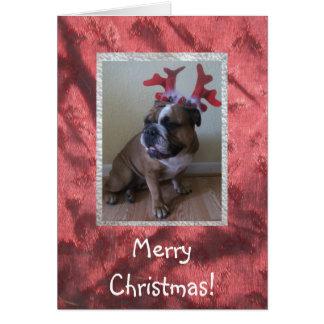 ¡Tarjeta inglesa de las Felices Navidad del dogo