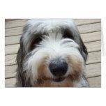 Tarjeta inglesa vieja del perro pastor de la sonri