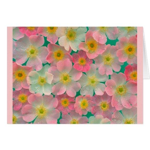 Tarjeta japonesa rosada de las anémonas