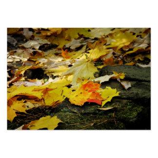 Tarjeta ligera de la foto del ATC del otoño Plantilla De Tarjeta De Negocio