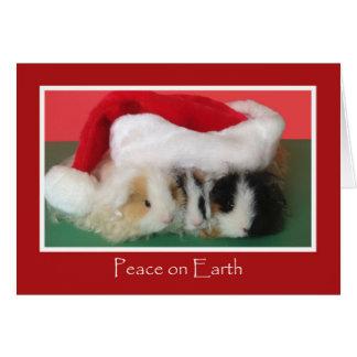 Tarjeta linda del conejillo de Indias del navidad