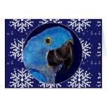 Tarjeta - Macaw decorativo del jacinto del día de