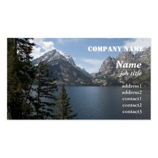 Tarjeta magnífica del perfil de la fotografía del tarjetas de visita