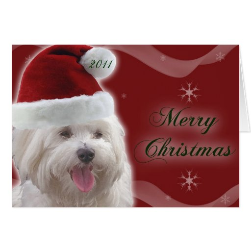 Tarjeta maltesa de las Felices Navidad