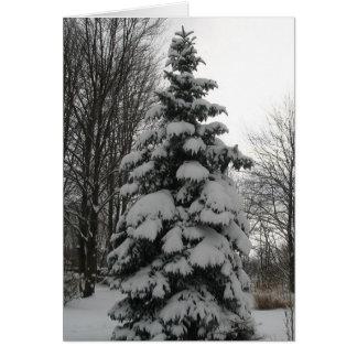 Tarjeta nevada del árbol de navidad