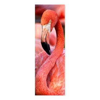 Tarjeta o señal del perfil del flamenco tarjetas de visita mini