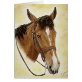 Tarjeta occidental del caballo