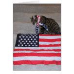 Tarjeta patriótica del gato