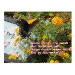 tarjeta pequeña pero apreciada de la mariposa postales
