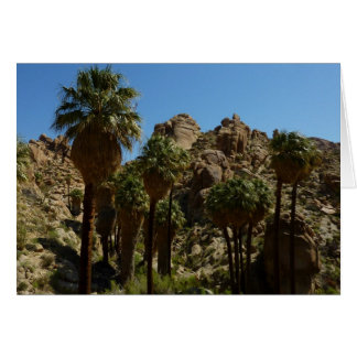 Tarjeta perdida del oasis de las palmas