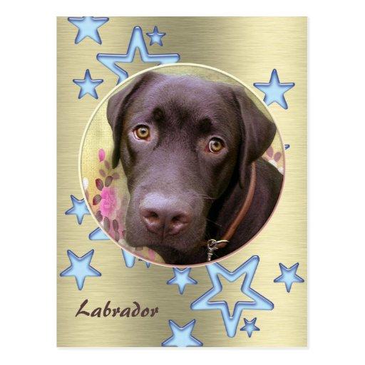 Tarjeta postal perro labrador