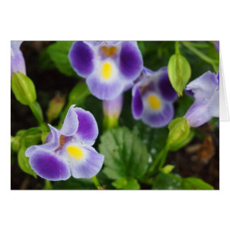 Tarjeta púrpura de la fotografía de la flor