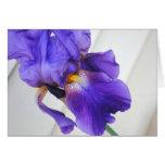 Tarjeta púrpura del feliz cumpleaños del iris