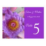 Tarjeta púrpura del número de la tabla de la flor  postales
