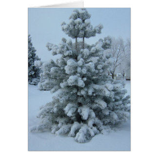 Tarjeta reunida del invierno del árbol
