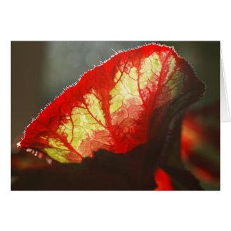 Tarjeta roja brillante de la hoja