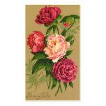 Tarjeta roja y rosada del vintage de los rosas de plantilla de tarjeta de visita
