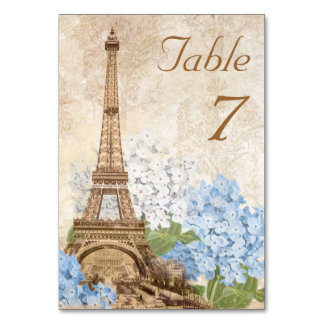 Tarjeta romántica de la tabla del vintage del Hydr