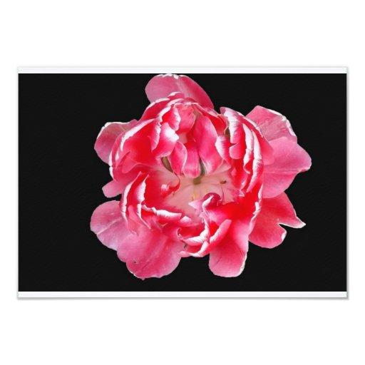 """Tarjeta rosada de la flor invitación 3.5"""" x 5"""""""