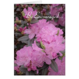 Tarjeta rosada de los rododendros