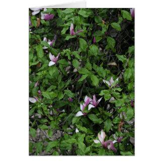 Tarjeta rosada del árbol de la flor