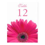 Tarjeta rosada del número de la tabla de la margar tarjetas postales