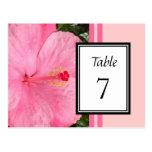 Tarjeta rosada del número de la tabla del hibisco tarjetas postales
