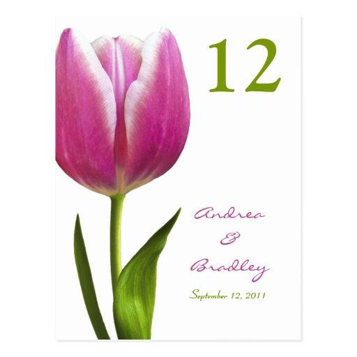 Tarjeta rosada del número de la tabla del tulipán postales